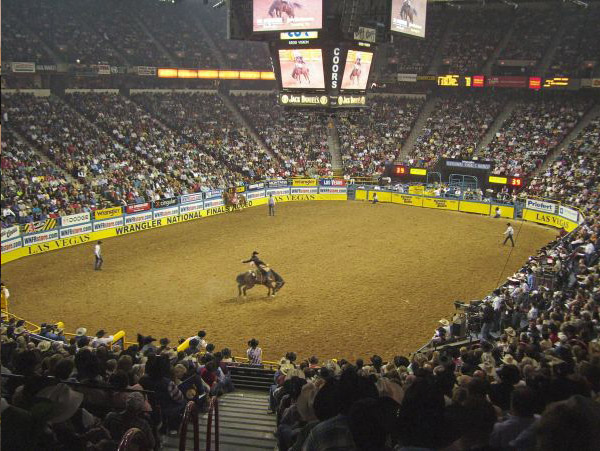 national-finals-rodeo